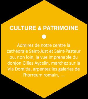 Admirez de notre centre la cathédrale Saint-Just et Saint-Pasteur ou, non loin, la vue imprenable du donjon Gilles Aycelin, marchez sur la Via Domitia, arpentez les galeries de l'horreum romain, …